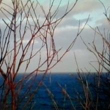 Autumn Ocean 2014