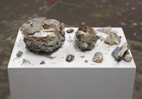 Conglomerates, 2011, oyster shell, seashell, concrete, plastic, zeolite, dimensions variable