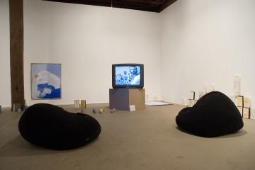 Gumnut Xanadu IV, 2007 installation view